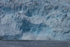 Seward Kenai Fjords Alaska 2018-413
