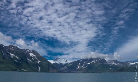 Seward Kenai Fjords Alaska 2018-439