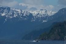 Seward Kenai Fjords Alaska 2018-446