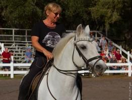 Lipizzaner Stallions FL 2019-54