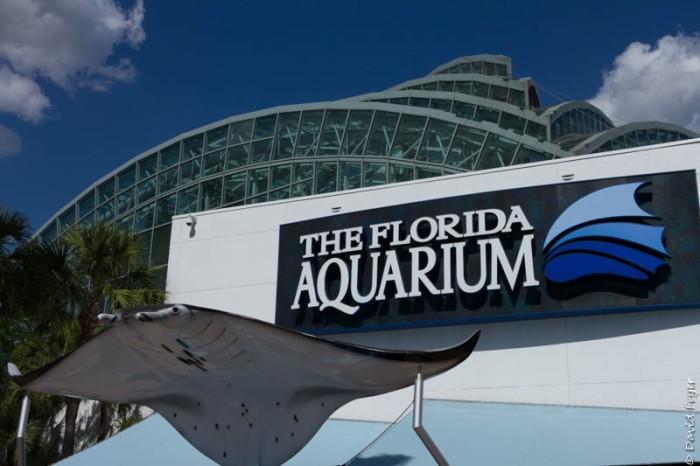 Tampa FL March 2019-133