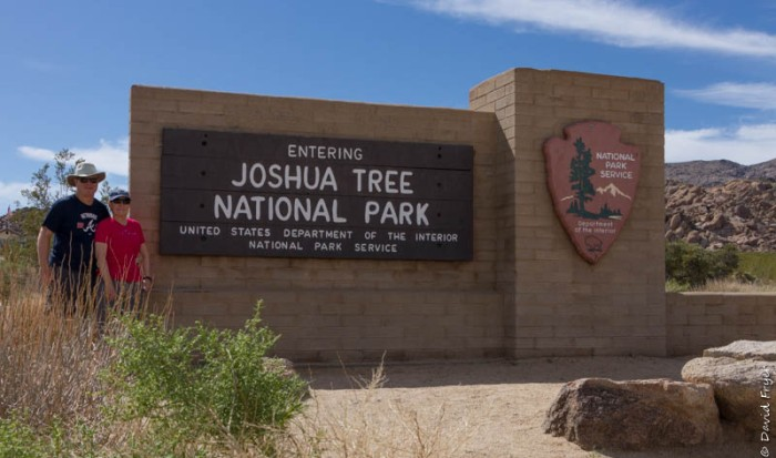 Josuha Tree NP March 2020-2
