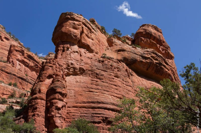 Organ Pipe Sedona and Camp Verde AZ April 2020-39