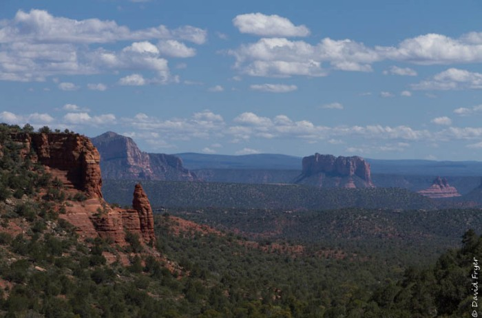 Organ Pipe Sedona and Camp Verde AZ April 2020-78