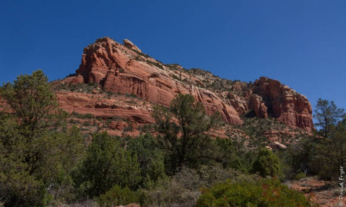 Organ Pipe Sedona and Camp Verde AZ April 2020-9