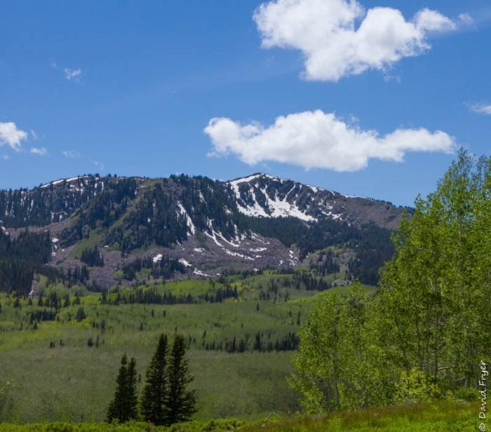 Wastch Mountain Midway Utah June 2020-111