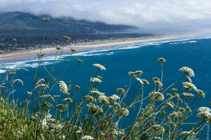 Cannon Beach OR July 2020-77